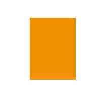 icon-leader-orange